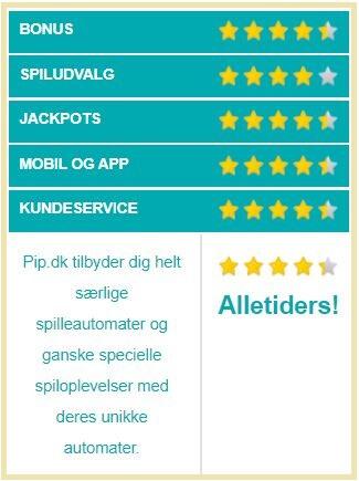 PIP.dk vurdering